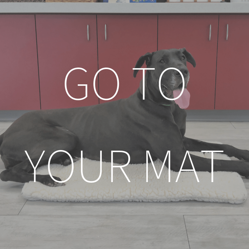 Go to Your Mat