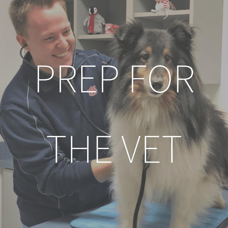 Prep for the Vet – Coming February 2019