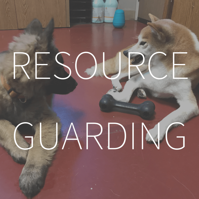 Resource Guarding – Coming Spring 2019