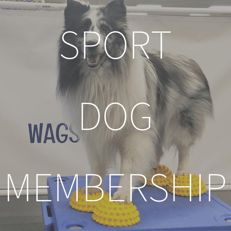 Sport Dog Membership