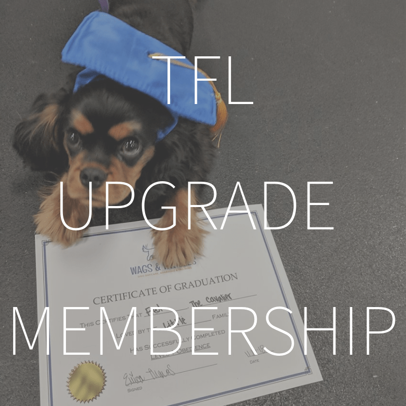 Training For Life Upgrade Membership